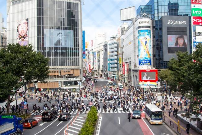 Tokio: skrzyżowanie Shibuya, Asakusa i punkt widokowy