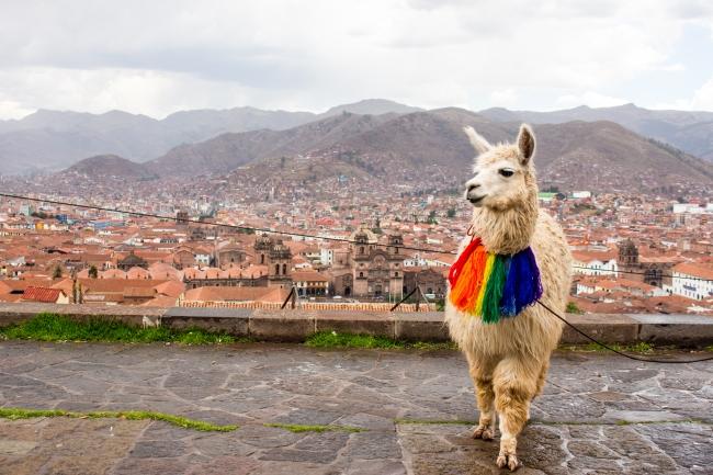 Cuzco – co warto zobaczyć w tym mieście?